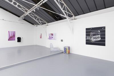Influencers, 2019. Exhibition view, Galerie Hussenot, Paris, France. - © Ben Elliot