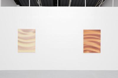 Mechanics of Skin, 2020. Exhibition view, Galerie Hussenot, Paris, France. - © Ben Elliot